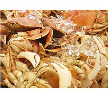 Crabby Day Photographic Print