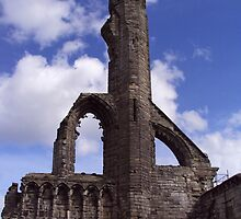 St Andrews' Cathedral by biddumy