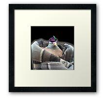 JEFF THE PIGEON PIMP Framed Print