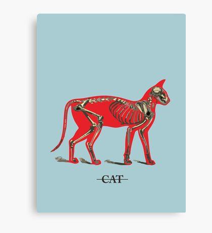 Animal - CAT Canvas Print