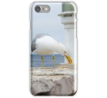 Seagull Eating Food Residues iPhone Case/Skin