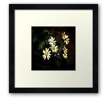 Where the Flowers Grow Framed Print