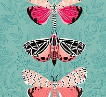 Lepidoptery No. 6 by Andrea Lauren  by Andrea Lauren