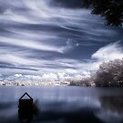 Oddity in Pond by Ethem Kelleci