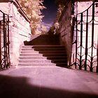 Entrance to Secret Garden by Ethem Kelleci