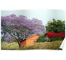 Colors of Upcountry Maui, Hawaii Poster