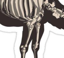 Animal - CAMEL Sticker