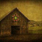 Star of Bethlehem by Christine Annas