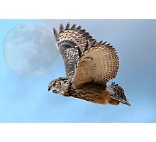 Eagle owl 'n' the moon Photographic Print