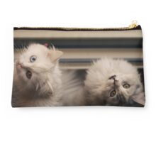 Kitty here, kitty there. Studio Pouch
