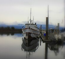 marina reflections by Debbie Roelle