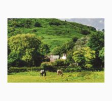 Horses in Eskdale Kids Clothes