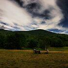 The Whisper of Yesterdays Hay by Wayne King
