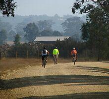 Gippsland - Bikes in the bush by Maureen Keogh