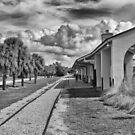 Venice Depot  by John  Kapusta