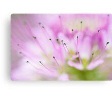 Green Pollen? Canvas Print