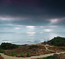 California Sunset  by cvrestan
