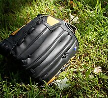 Baseball glove in the grass by agenttomcat