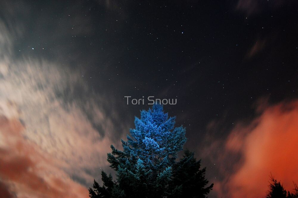 Night Sky by Tori Snow