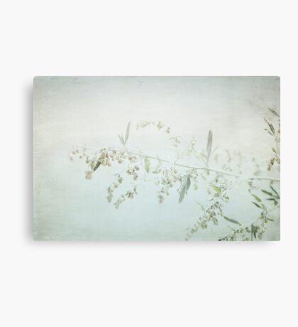 Fragile - British Columbia, Canada Canvas Print