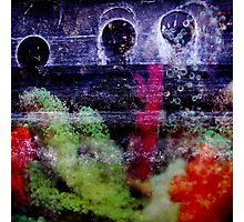 static kill Photographic Print