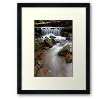 """""""Over the Log"""" Framed Print"""