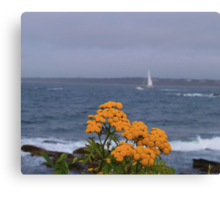 Yellow flowers and sailing yacht Canvas Print