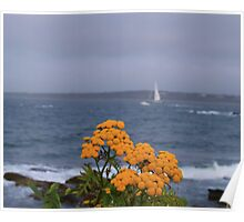 Yellow flowers and sailing yacht Poster