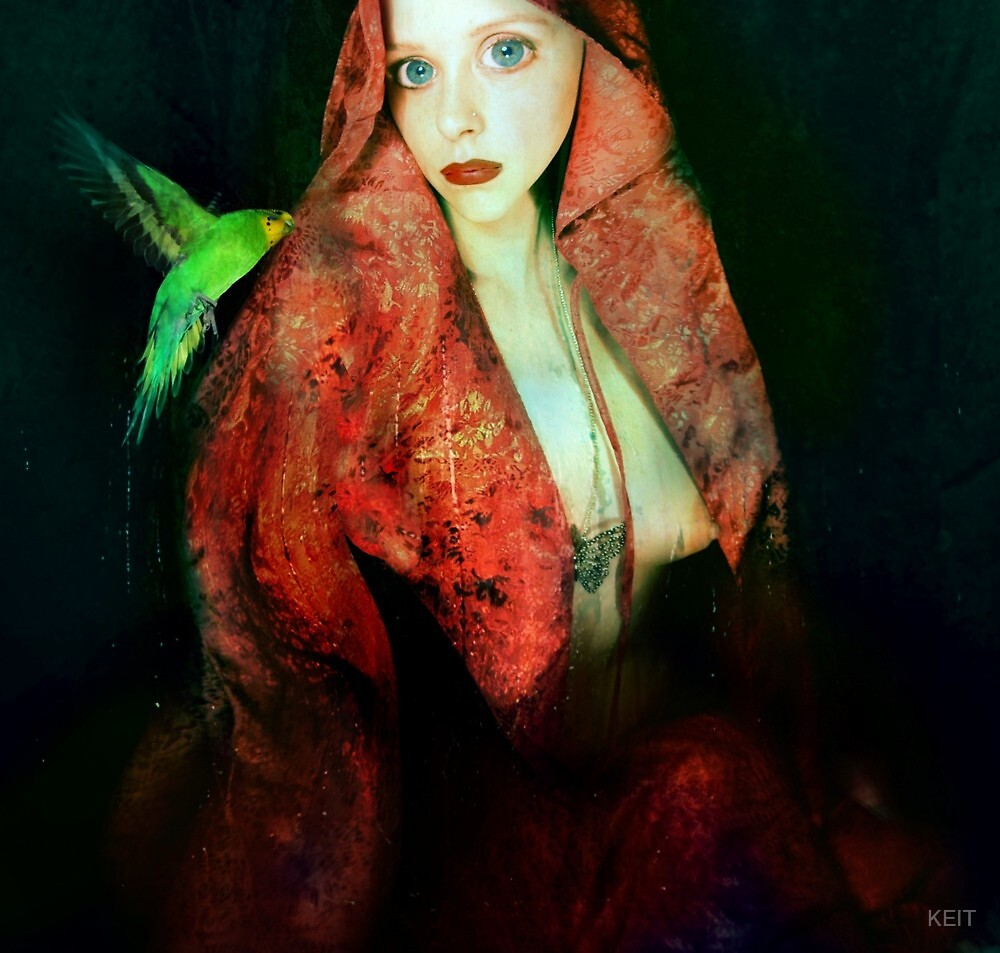 LADY WITH PAPAGALLO by KEIT