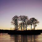 Winter Sunset by Jim Wilson