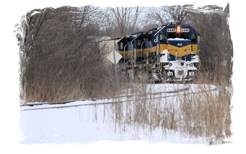 Engine No. 6446 by Brian Dodd