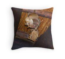 Bats about you! Throw Pillow