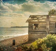 The old boat house by Angela King-Jones