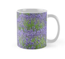 Purple lavender flowers Mug