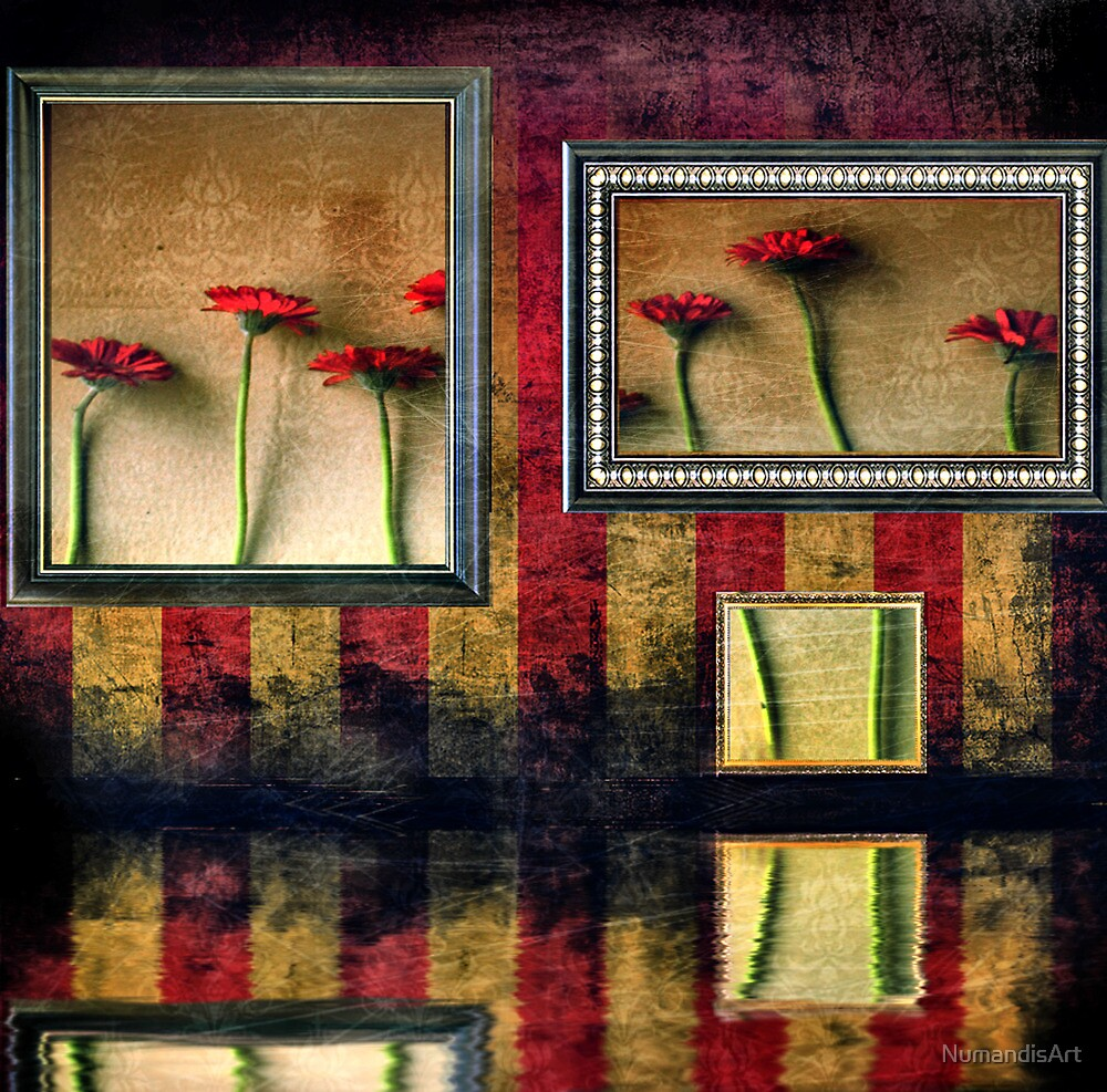Reflection Gallery by NumandisArt