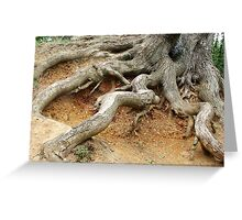Essex Roots Greeting Card