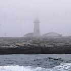 Foggy Coastline by Gail Falcon