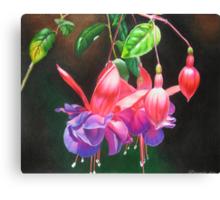 Fuchsia ballerinas Canvas Print