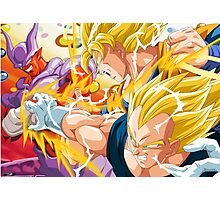 Battle Goku and Vegeta Photographic Print
