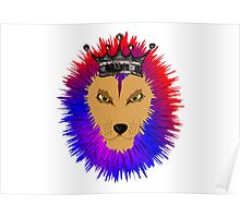 Cool Jungle king Lions Head Poster