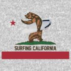 Surfing California by actionrepublic