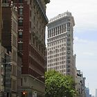 Flatiron Building, NYC by chipster