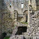 Rievaulx Abbey Ruins by Audrey Clarke