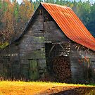 Charming Rural Barn by NatureGreeting Cards ©ccwri