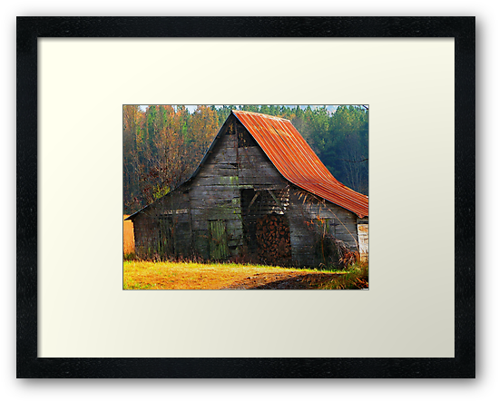 Charming Rural Barn by NatureGreeting Cards ©ccwri