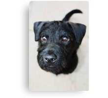 """Ozzy """"Prince of Darkness"""" Canvas Print"""