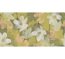 Marisol Floral - Sweet Pea Photographic Print