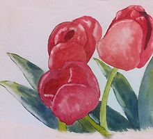 Tulip's  by Sweeettfriday