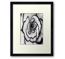 Beauty can still be found even without color!!! ©  Framed Print