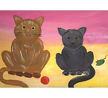 The Kitties and Their Toys Photographic Print